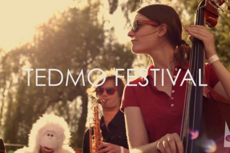 Tedmo Festival en acoustique video
